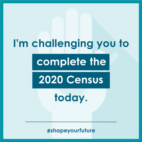 Census Incentivizes Participation