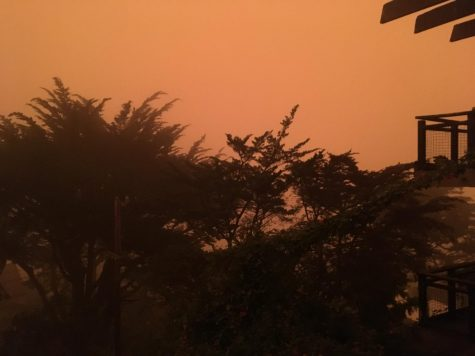Smoky skies and heat make for an intense combination in California cities like San Francisco. (pictured). While the haze in Sacramento appears to be less orange than this, the heat is more extreme.