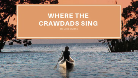 'Where the Crawdads Sing' a perfect read when you're shut indoors