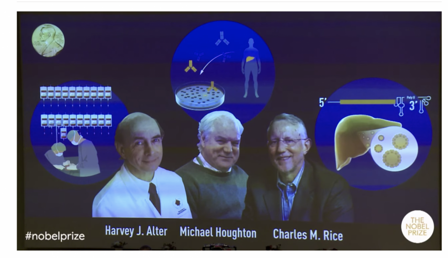 A screen shot of the Nobel Committee announcement of the award for Medicine or Physiology.